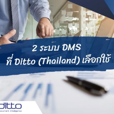 2 ระบบ DMS ของ Ditto